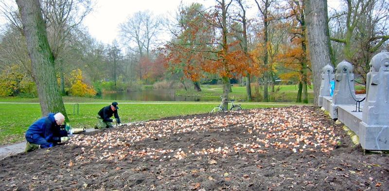 Bloembollen geplant in het Vondelpark in Amsterdam