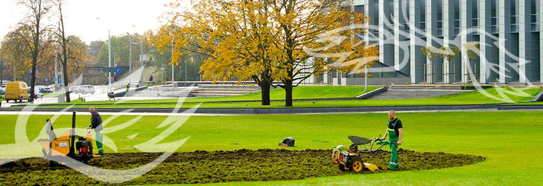 voorbereiding van plantwerk in letland