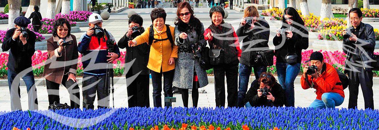 bewonderaars bij bloem mozaiek in shanghai flower port