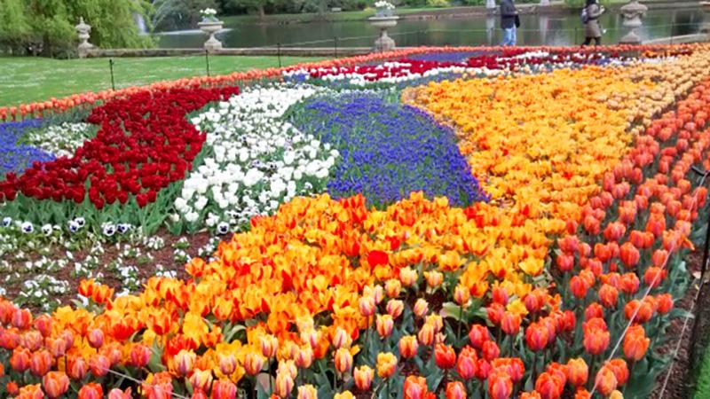 Bloemenmozaiek in Kew Gardens Londen vol in bloei